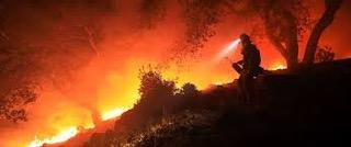 بزرگترین آتش سوزی در تاریخ کالیفرنیا