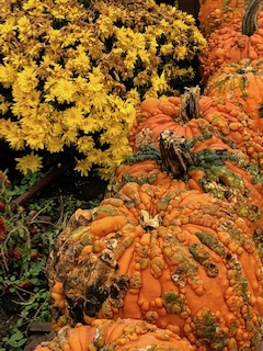هالووین ؛سفر ارواح به جهانی دیگر!